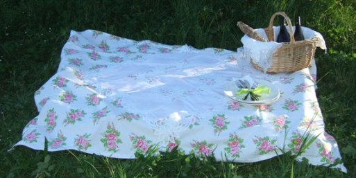 1 - PICNIC COUNTRY CHIC